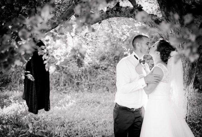 Fotografii nunta – Dumitru & Ana